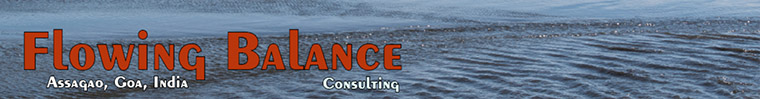The Flowing Balance Consulting